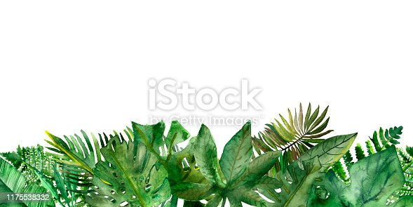 Watercolor hand painted nature border composition with different green tropical leaves and branches for jungle wild postcards and beach party invitations on the white background