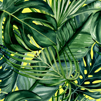 Watercolor hand painted seamless pattern with green tropical leaves of monstera, banana tree and palm on yellow background.