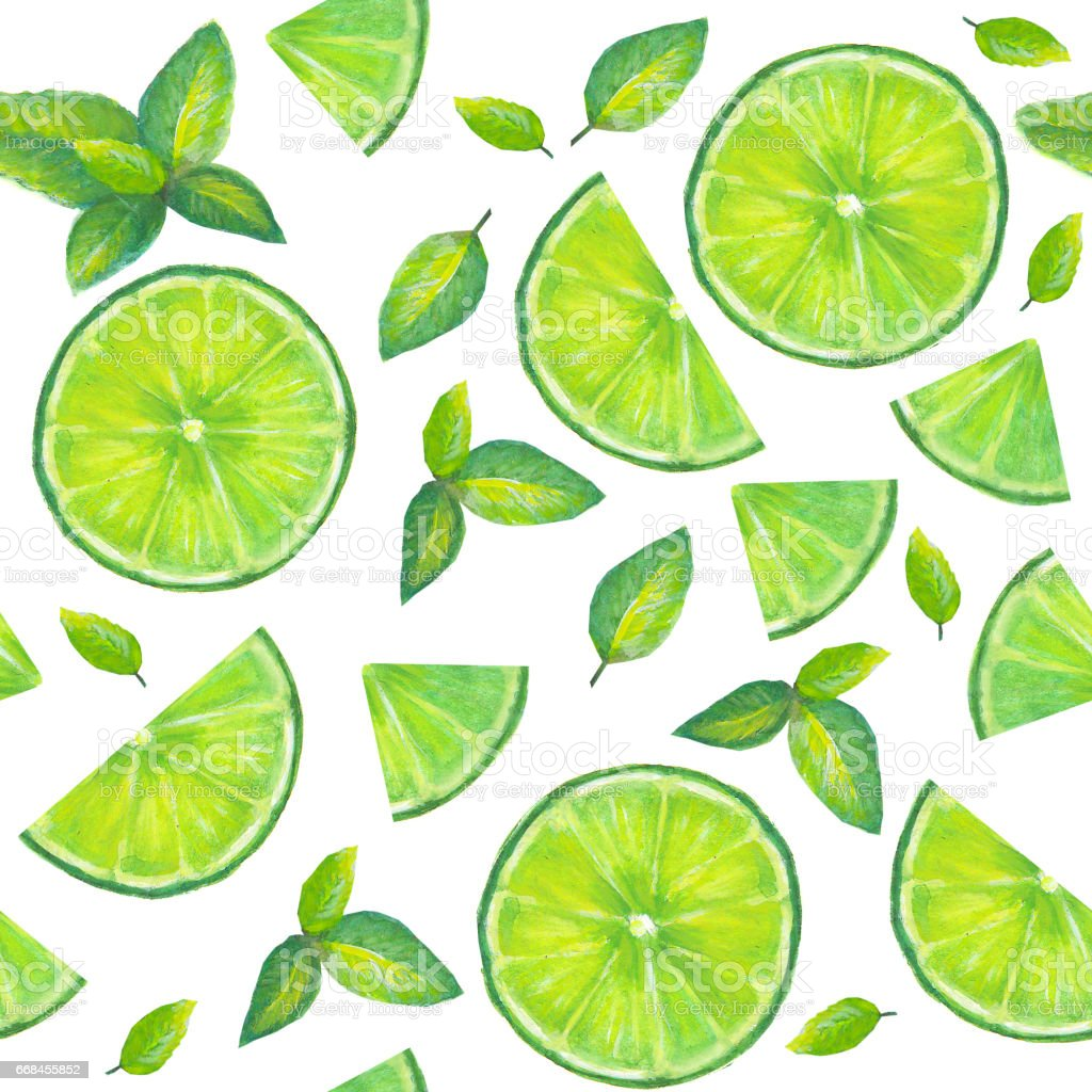 Watercolor hand painted seamless pattern with slices of  lime and mint leaves on white background vector art illustration