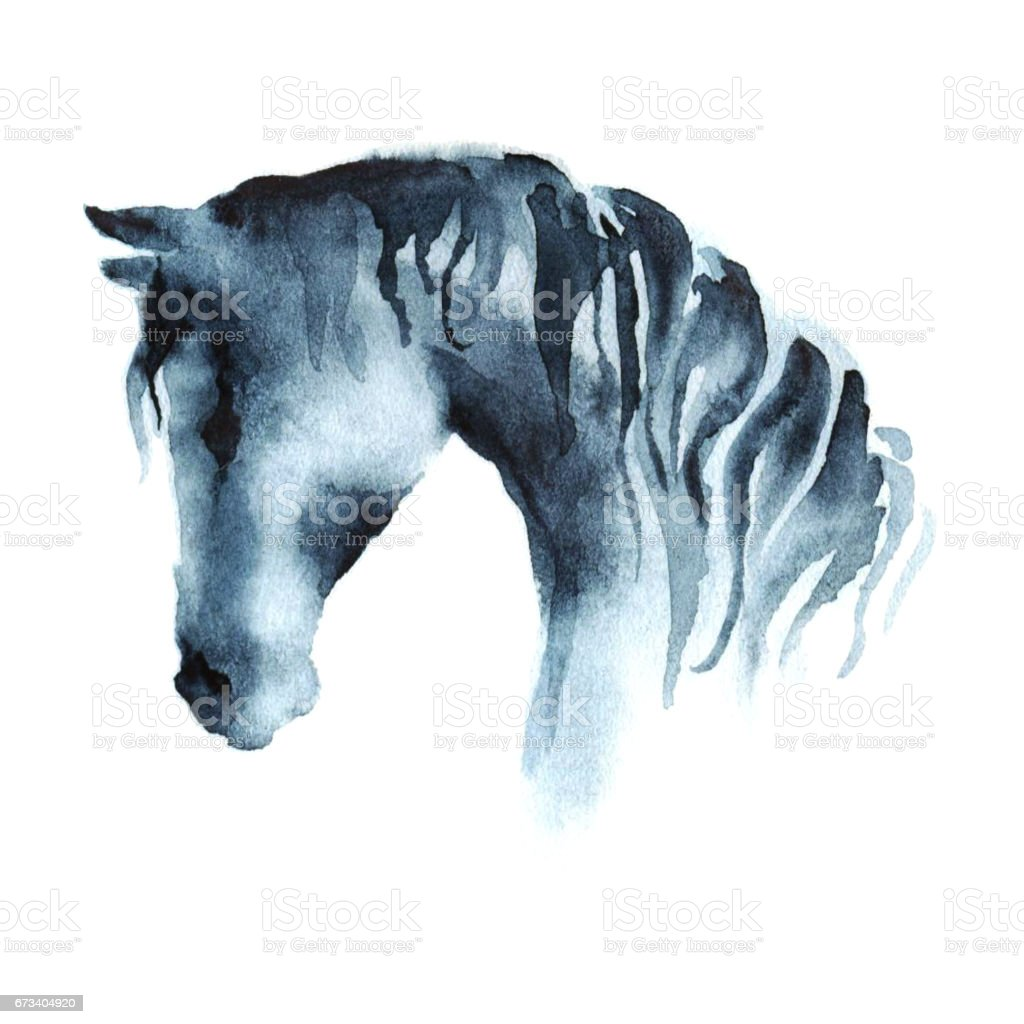 Watercolor Hand Painting Horse Head On White Stock Illustration Download Image Now Istock