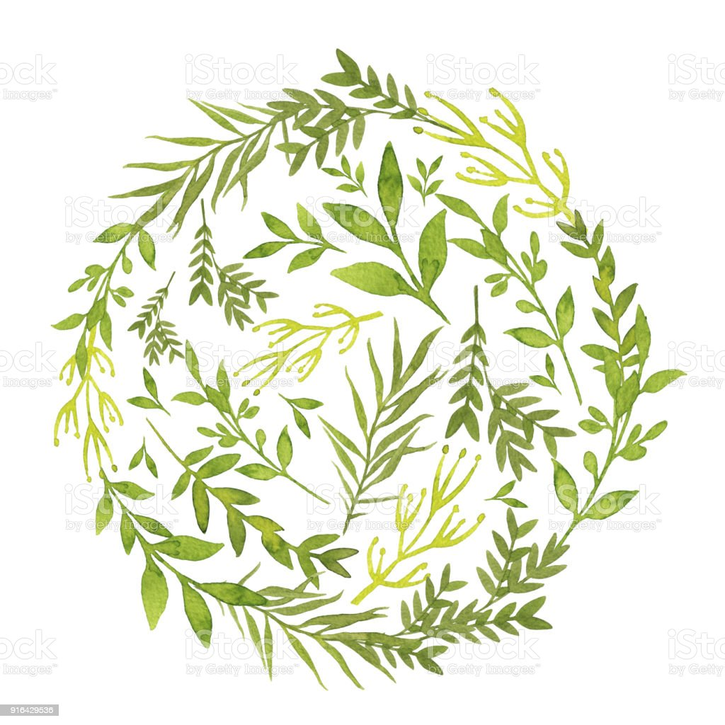 watercolor handdrawn circle shaped template with green leaves and