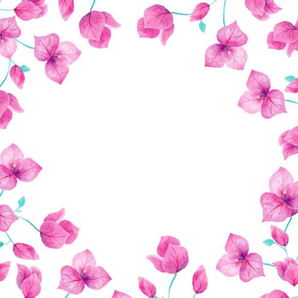 Borde de marco flores acuarela bouganvillea hecha a mano. Ideal para invitaciones, boda, decoraciones, tarjetas, fondos de pantalla. - ilustración de arte vectorial