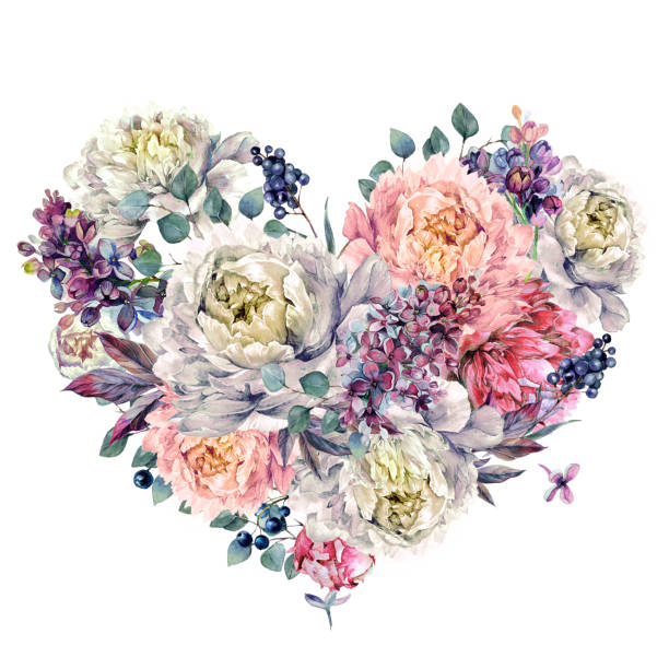 Watercolor Heart made of Peonies and Lilac vector art illustration