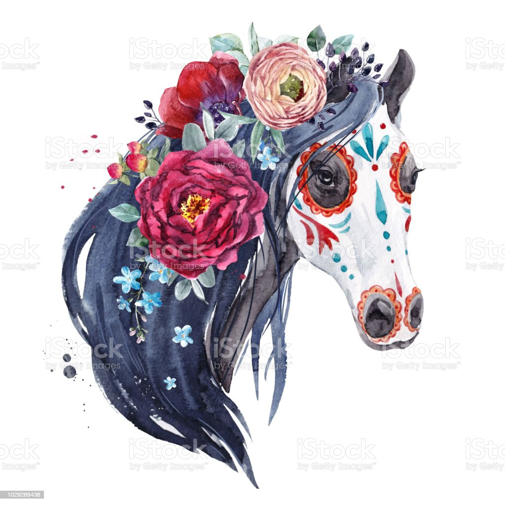 Watercolor Horse Portrait Stock Illustration Download Image Now Istock