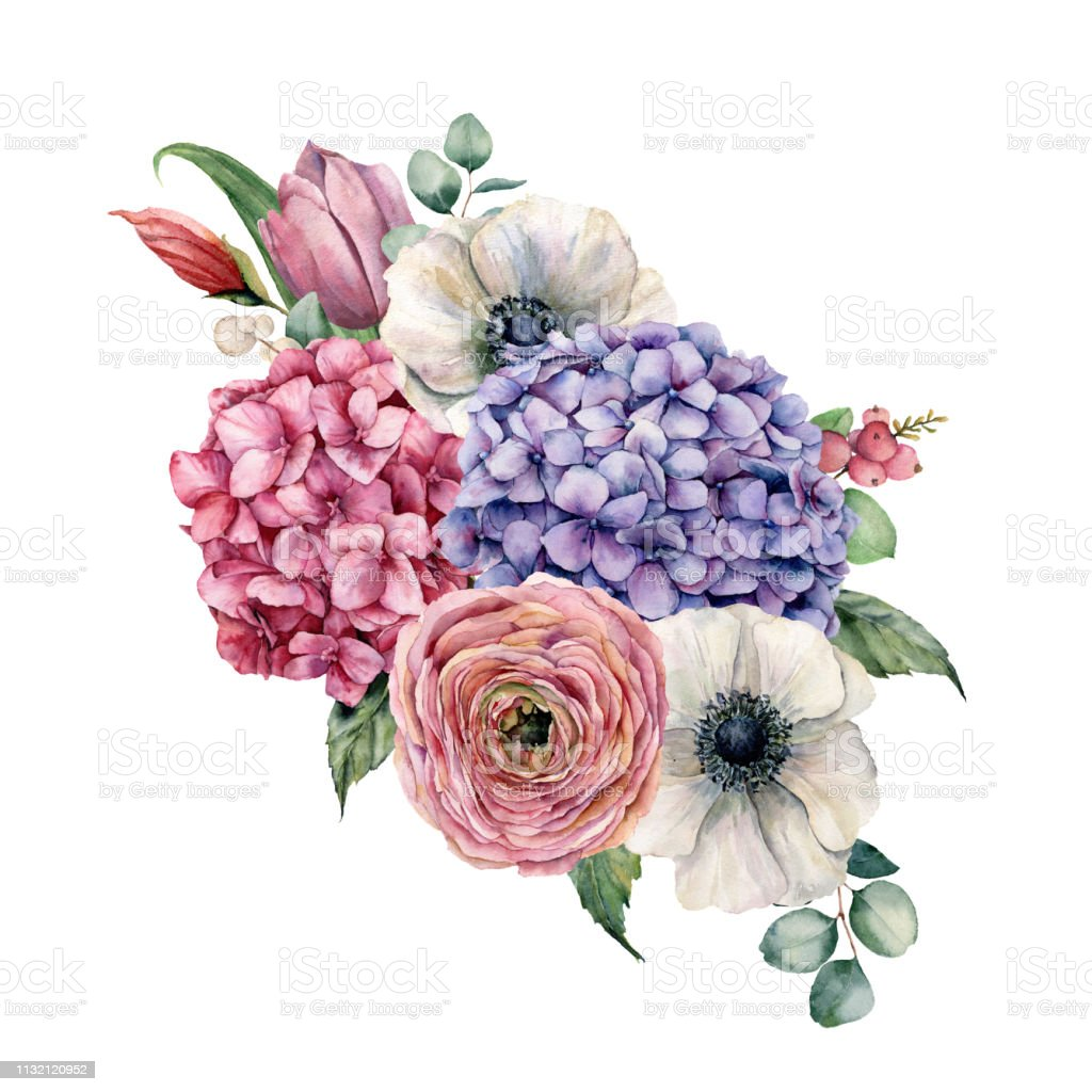 Watercolor hydrangea flowers bouquet. Hand painted pink and violet...
