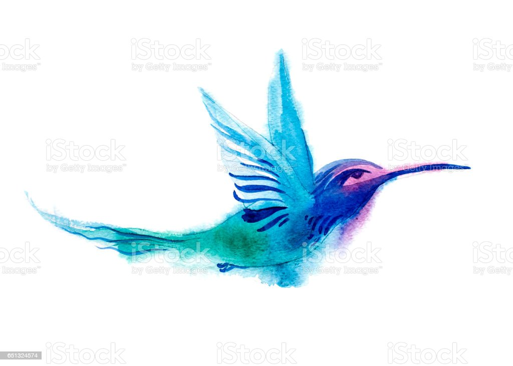 Watercolor Illustration Blue Hummingbird Flying And Isolated On