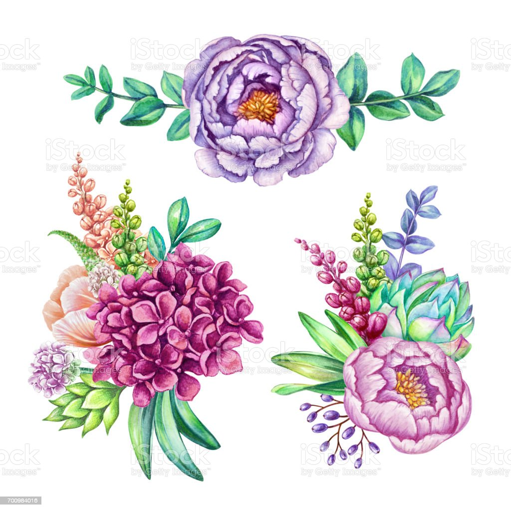 watercolor illustration floral clip art set wild flowers collection rh istockphoto com penny clip art coin penny clip art