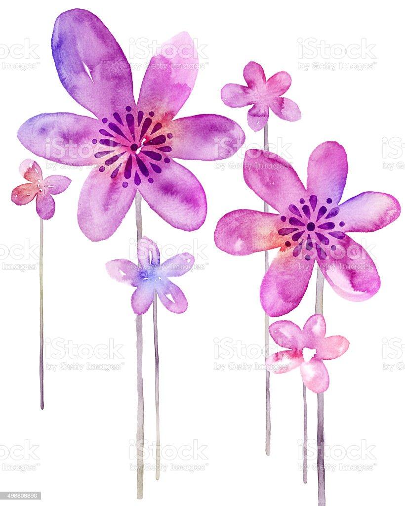 水彩画の花柄でシンプルな背景のイラスト のイラスト素材 498868890
