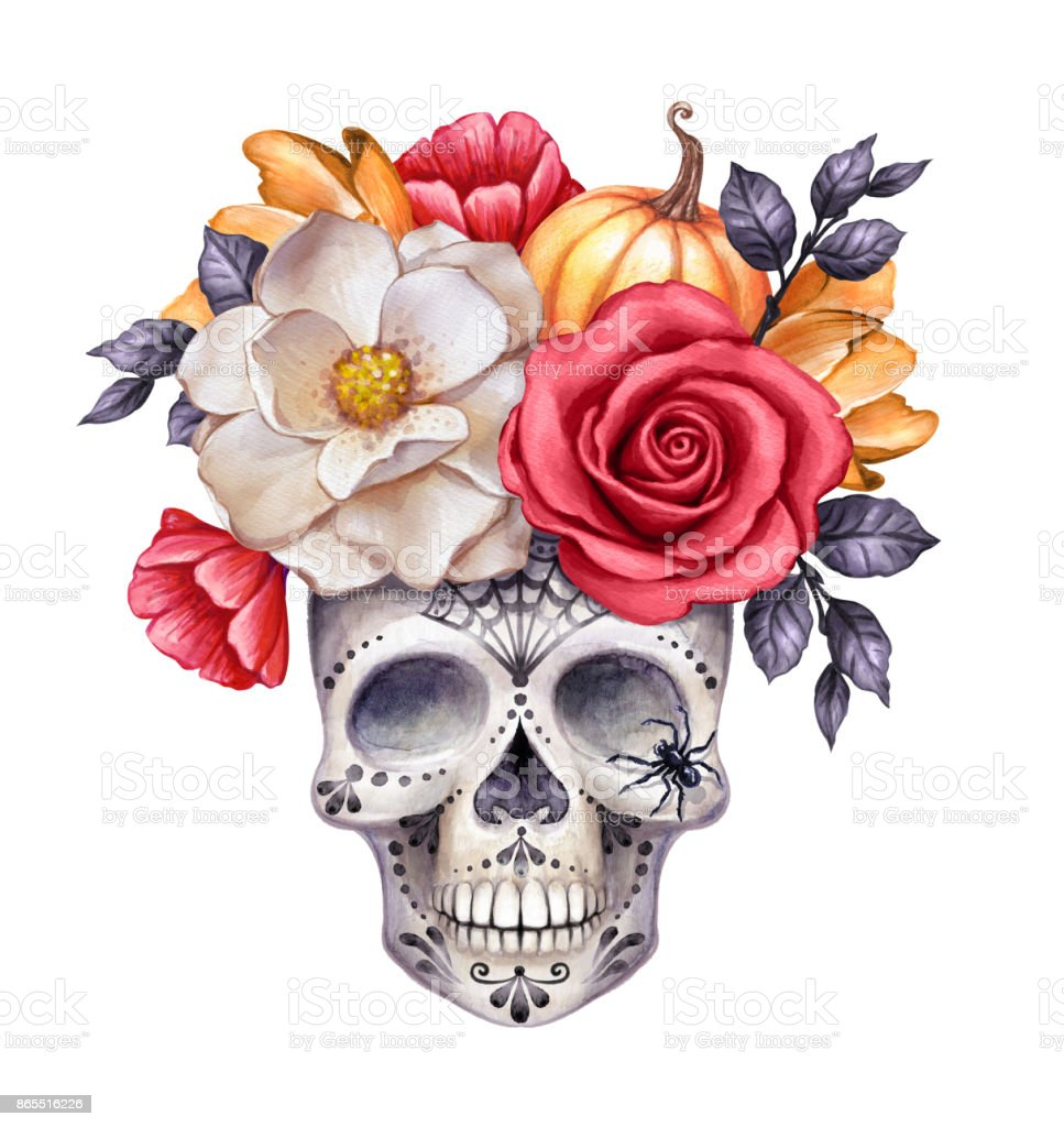 watercolor illustration, Halloween floral skull, fall flowers, autumn pumpkin, dia de los muertos, festive clip art isolated on white background vector art illustration