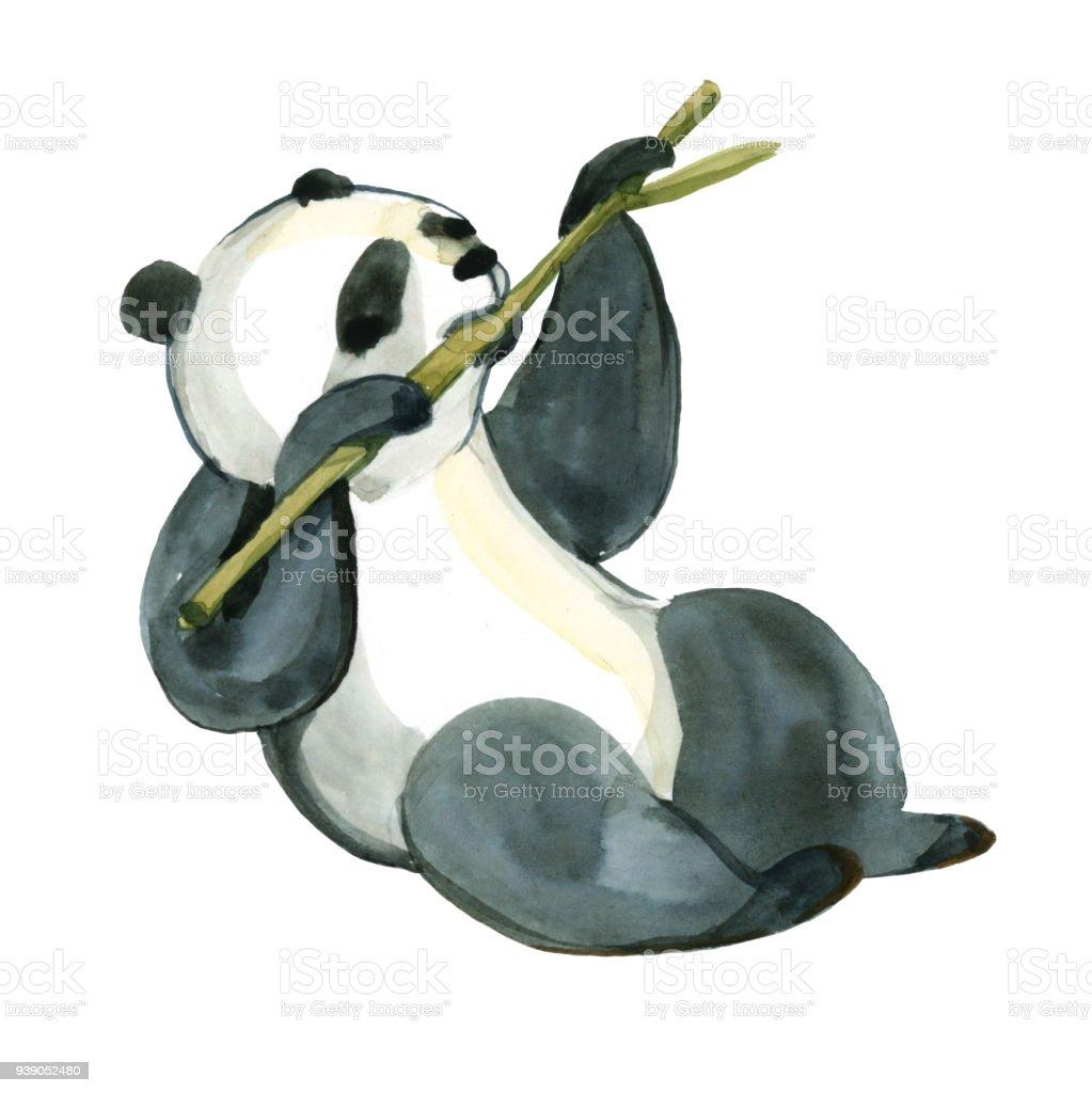 Aquarell Bild Isoliert Auf Weissem Hintergrund Schwarz Weiss Panda