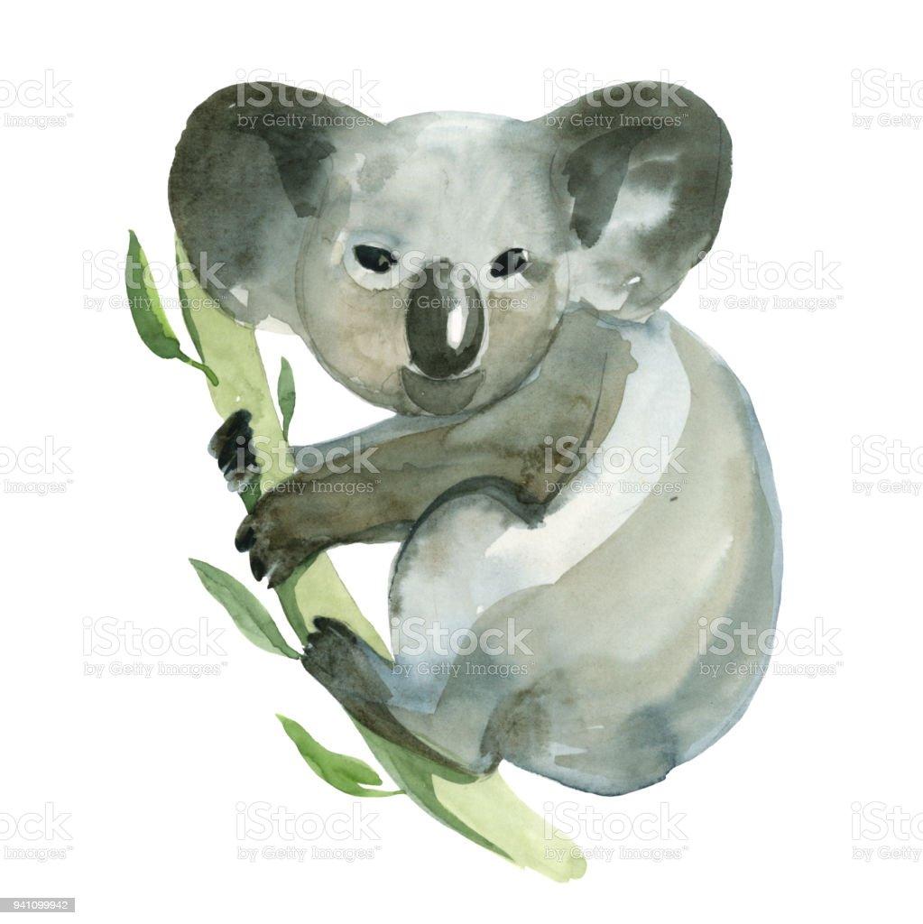 Aquarell Bild Isoliert Auf Weissem Hintergrund Graue Koala Halt Den