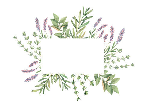 Watercolor Illustration Label With Botanical Green Leaves Herbs And Branches Floral Design Elements Perfect For Wedding Invitations Greeting Cards Blogs Prints Postcards Stock Illustration - Download Image Now