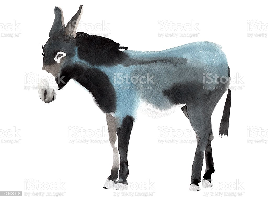 Watercolor illustration of a donkey vector art illustration