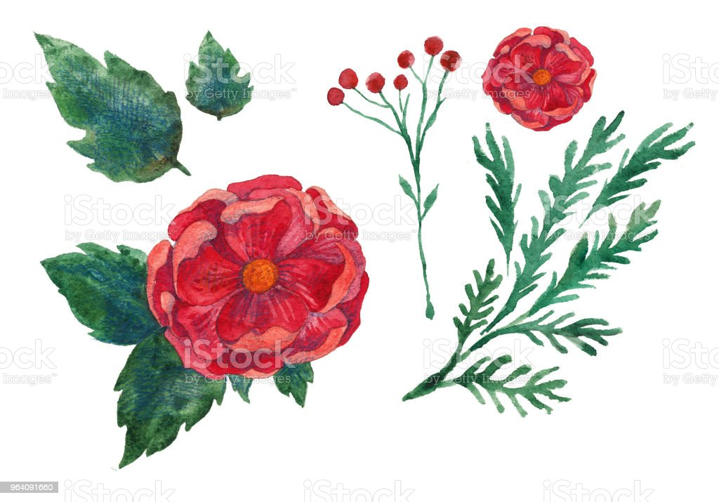 watercolor illustration of a flower, large red flower with leaves - Royalty-free Abstract stock illustration