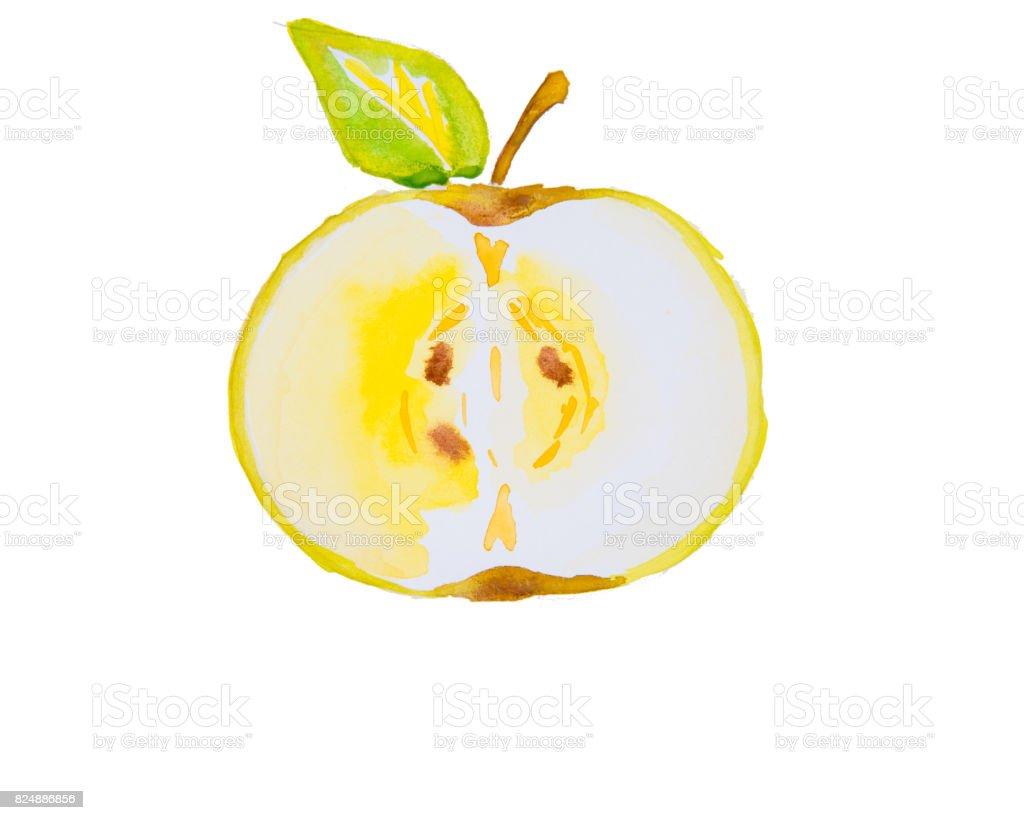 Bir Elma Suluboya çizimi Stok Vektör Sanatı Arka Planlarnin Daha