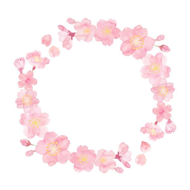 手描きの桜の水彩画 - 桜点のイラスト素材/クリップアート素材/マンガ素材/アイコン素材