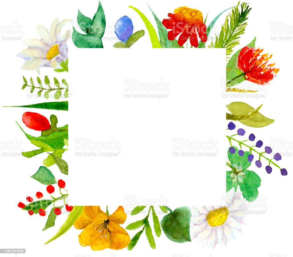 Watercolor illustration of garden and wildflowers combined into a frame. Greeting card, banner and invitation template. векторная иллюстрация
