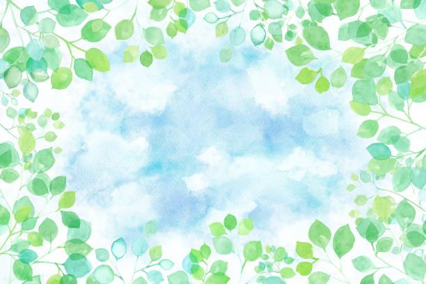 illustrazioni stock, clip art, cartoni animati e icone di tendenza di watercolor illustration of sunbeams sky background looking up - forest bathing