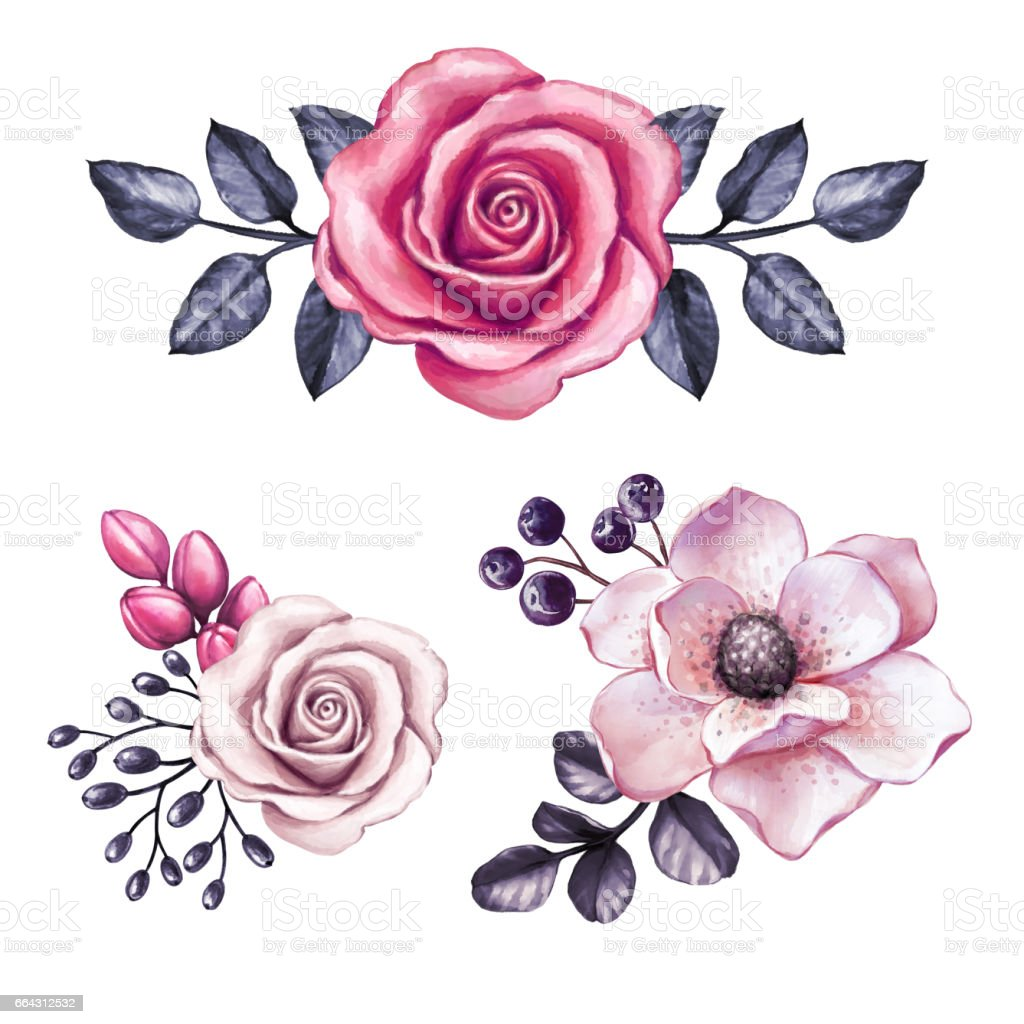 Watercolor illustration pink flowers and black leaves design watercolor illustration pink flowers and black leaves design elements floral decoration isolated on mightylinksfo
