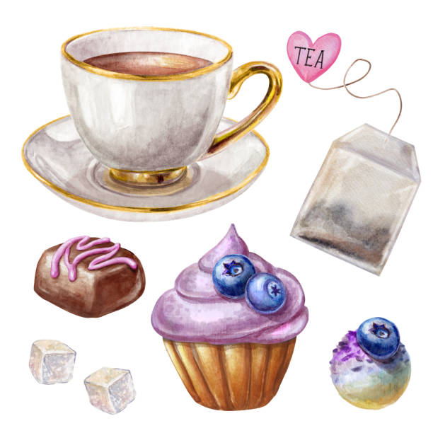 watercolor illustration, porcelain tea cup, blueberry cupcake, chocolate truffle, biscuit isolated on white background vector art illustration