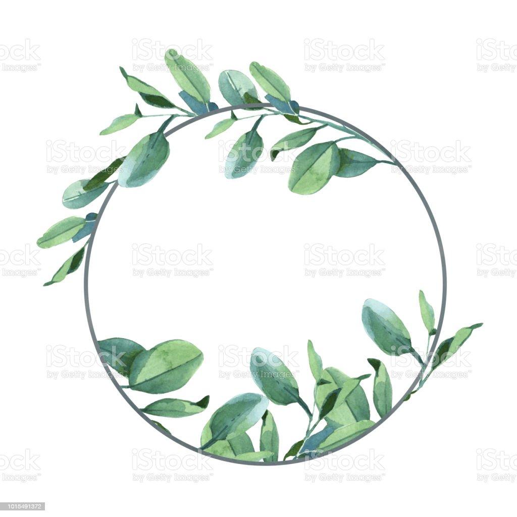 Round Eucalyptus Leaves