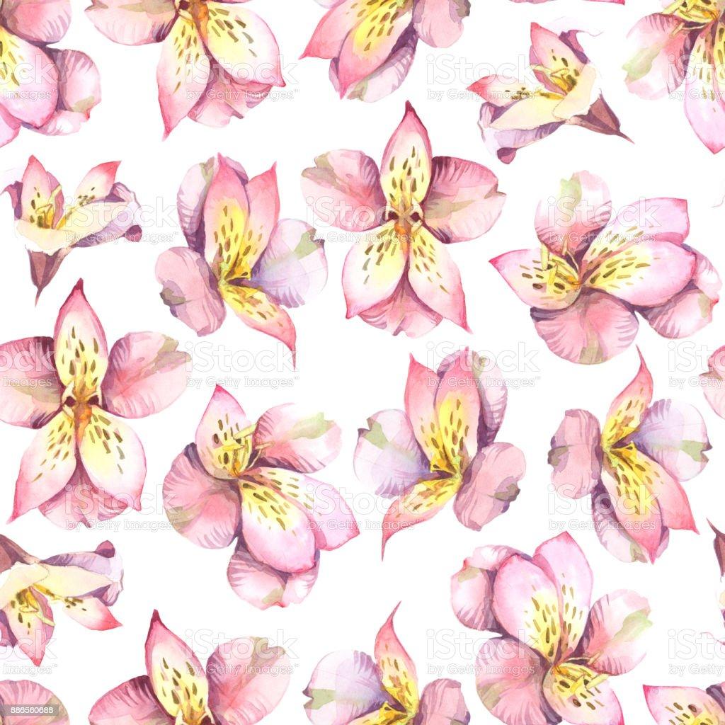 Ilustración acuarela. Patrón sin fisuras de flores rosas sobre fondo gris. - ilustración de arte vectorial