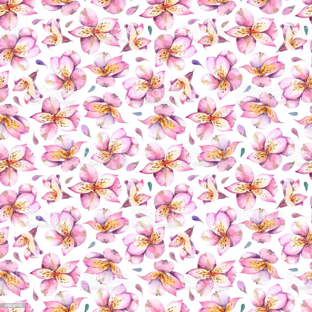 Ilustración acuarela. Patrón sin fisuras de flores rosas sobre fondo blanco. - ilustración de arte vectorial
