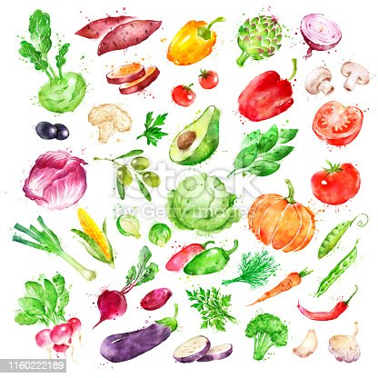 Hand drawn watercolor illustration set of vegetables with paint splashes.