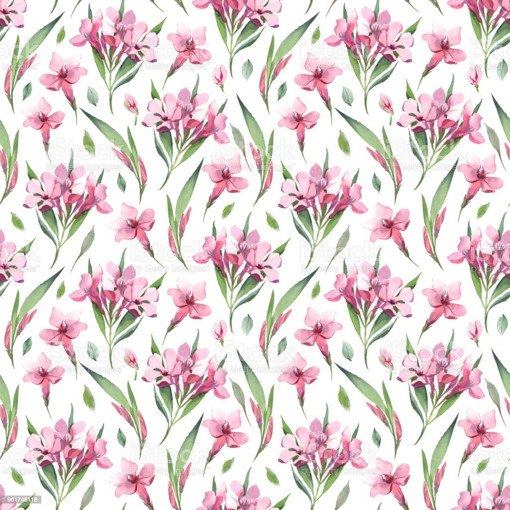 Ilustración acuarela. Patrón transparente acuarela de flores rosas y hojas verdes sobre fondo blanco. - ilustración de arte vectorial