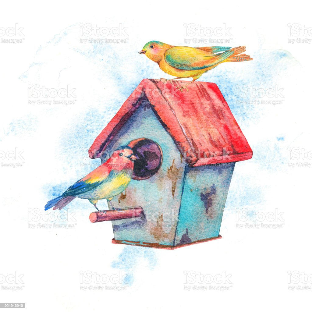 Watercolor illustration with birdhouse and pair of birds vector art illustration