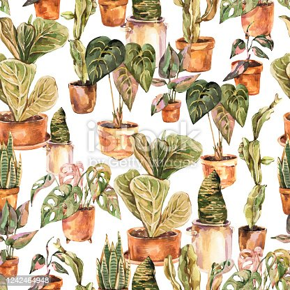 Watercolor indoor plants seamless pattern, urban jungle natural texture. Vintage design wallpaper in bohemian style on white background. Cozy home collection. Boho home decor