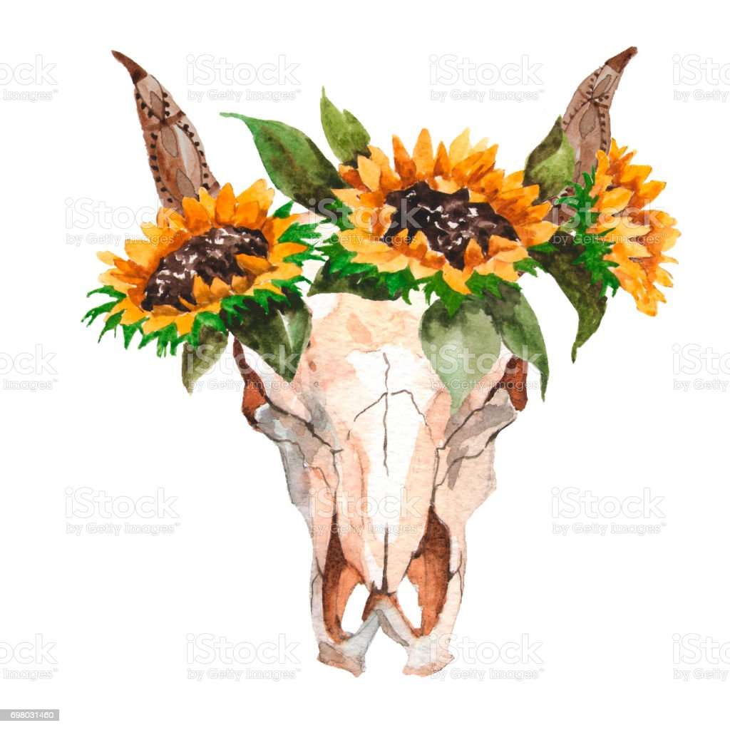 Watercolor Isolated Bulls Head With Flowers And Feathers On White Background Boho Style Skull