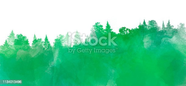 Watercolor landscape with pine and fir trees in green color, abstract nature background on white, forest template