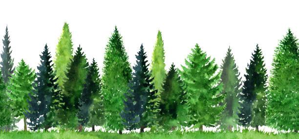 木々 の水彩風景 ベクターアートイラスト