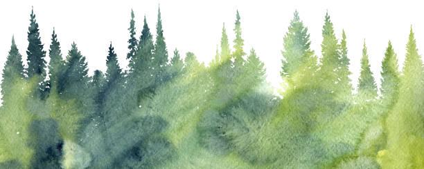 illustrations, cliparts, dessins animés et icônes de aquarelle paysage avec des arbres - arrière plans de nature