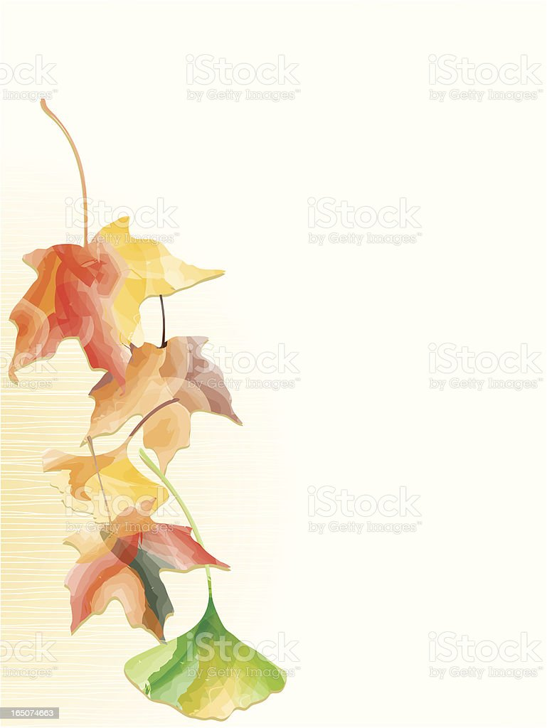 Watercolor Leaves Border Royalty Free Stock Vector Art Amp More Images