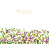 水彩水仙とクロッカスの花