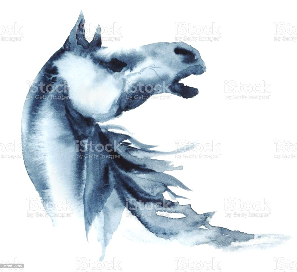 Watercolor neighing horse on white. vector art illustration