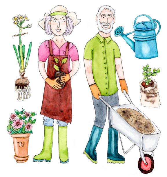 watercolor old couple with garden set - old man hats pictures stock illustrations, clip art, cartoons, & icons