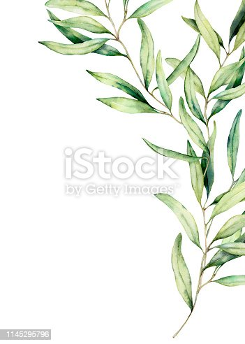 Watercolor olive branch card with leaves. Hand painted floral illustration isolated on white background for design, print, fabric or background