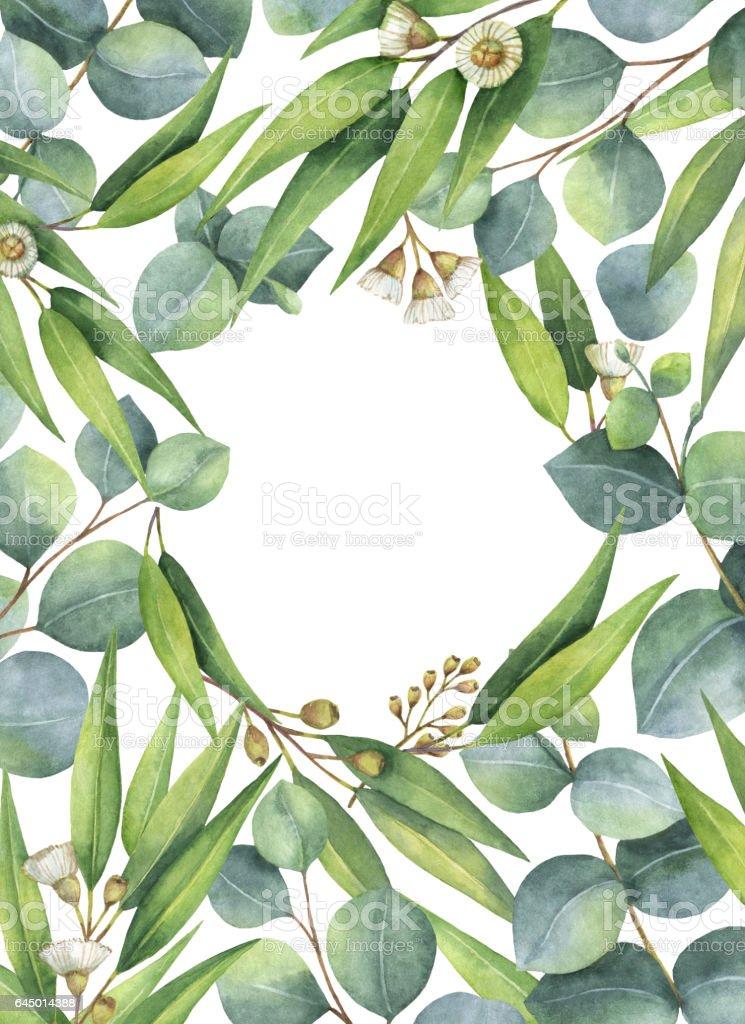Ilustración De Corona Ovalada Acuarela Con Eucaliptos Verdes