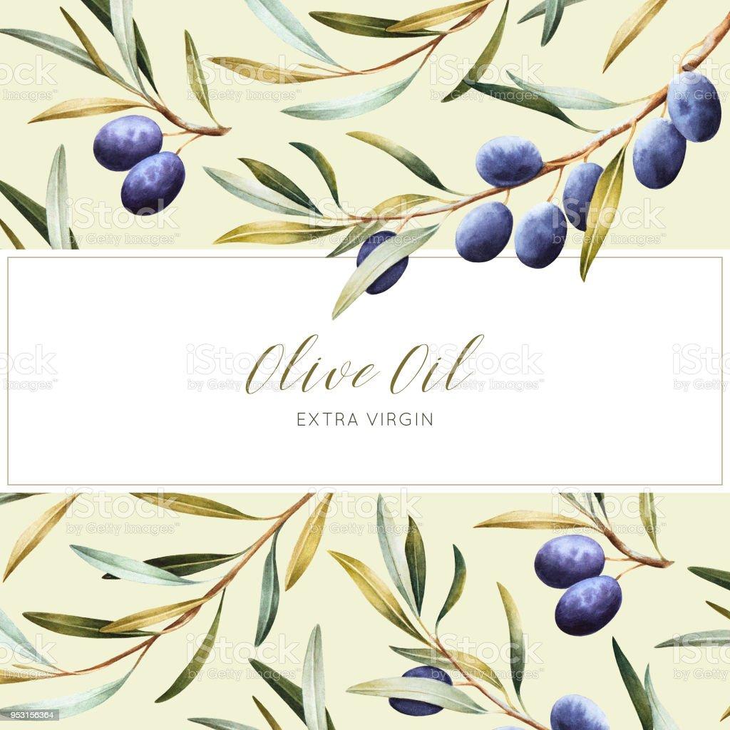 Watercolor package design for olive oil. vector art illustration
