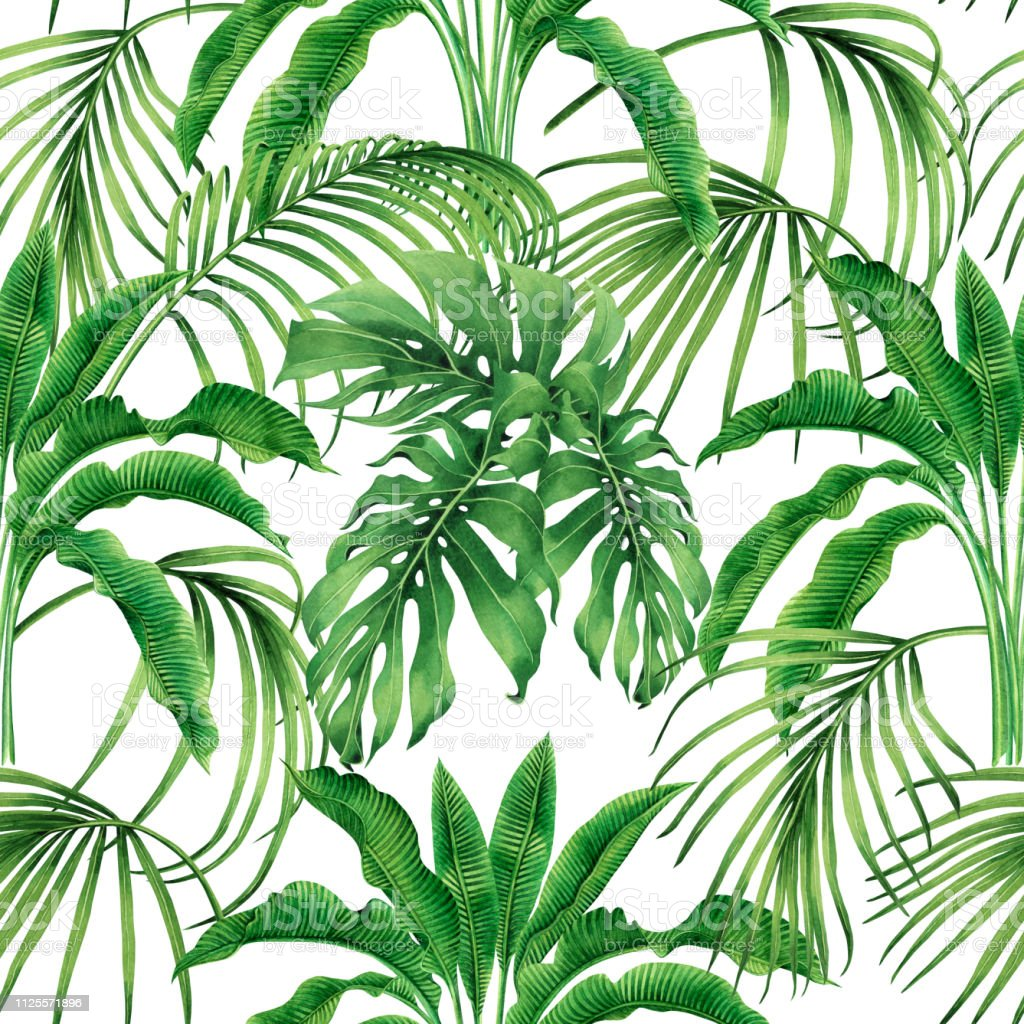Watercolor painting coconut,banana,palm leaf,green leaves seamless pattern background.Watercolor hand drawn illustration tropical exotic leaf prints for wallpaper,textile Hawaii aloha jungle style. vector art illustration