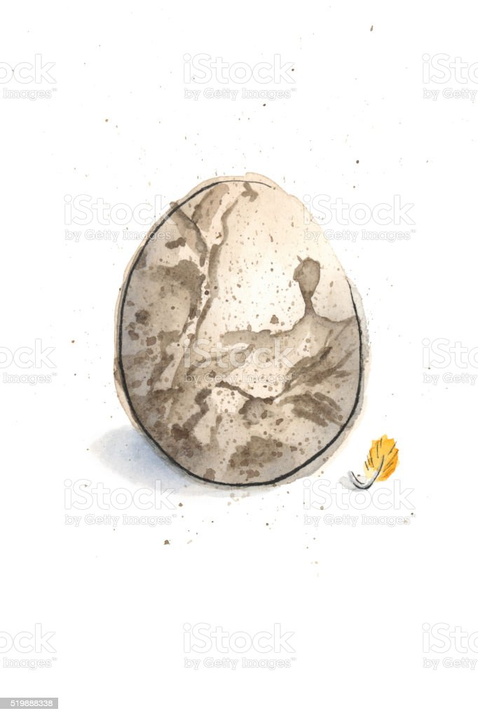 Watercolor Painting of a Baltimore Oriole Egg. Raster Illustration. vector art illustration
