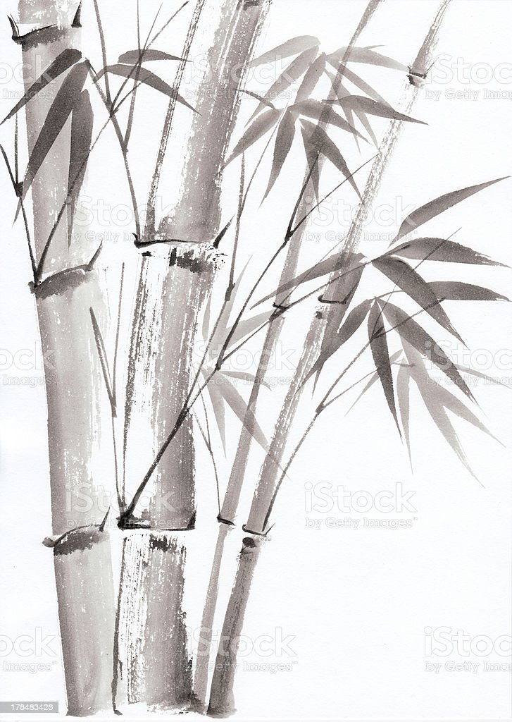 Watercolor painting of bamboo royalty-free stock vector art
