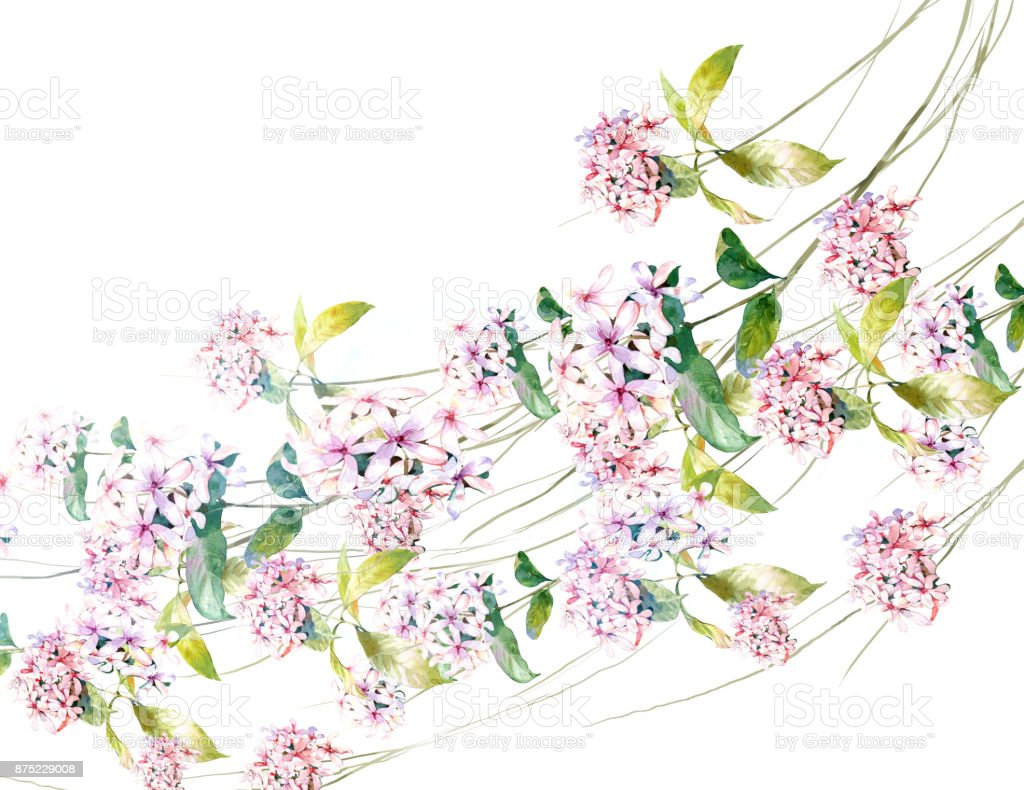 watercolor painting of leaves and flower, on white background vector art illustration