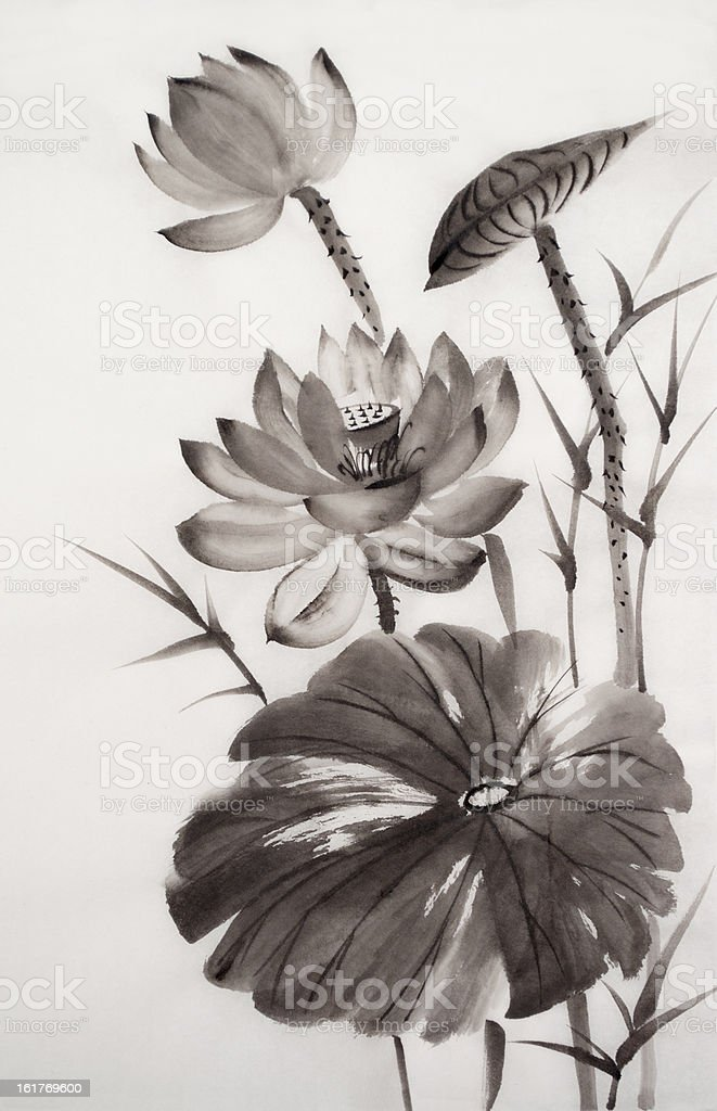 Watercolor painting of lotus flower royalty-free stock vector art