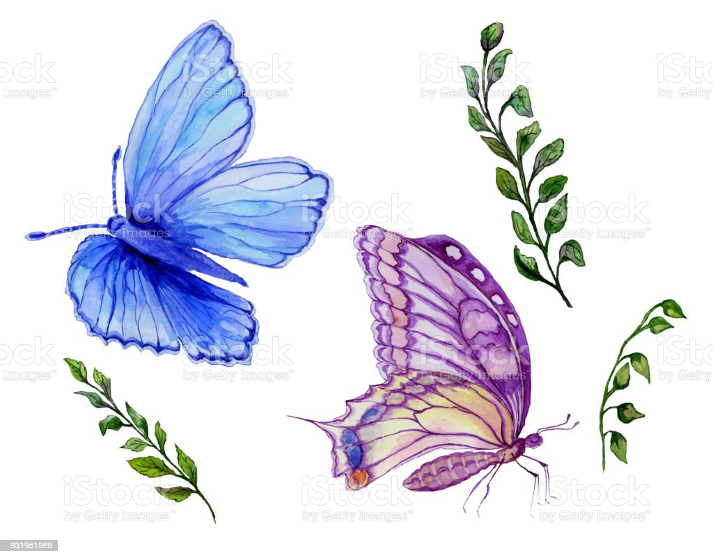 Ilustración de Set De Acuarela Hermosas Mariposas Azules Y Púrpuras ...