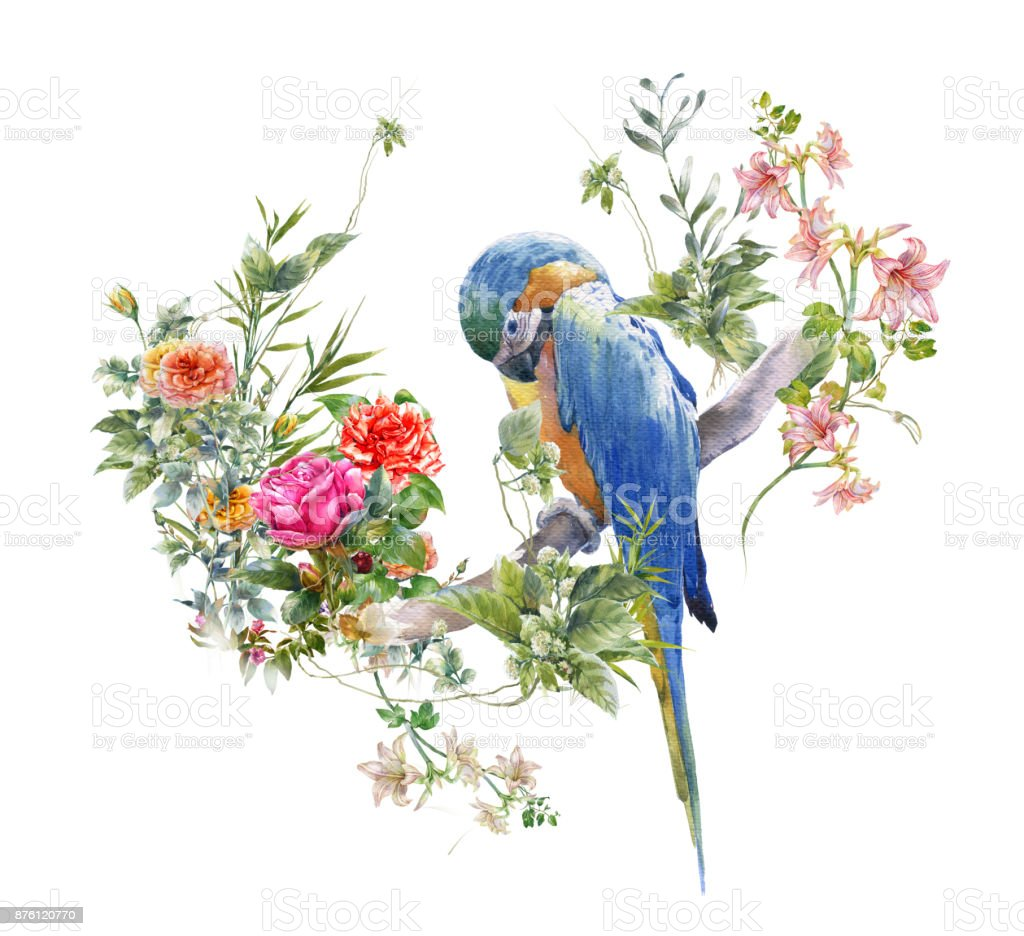 watercolor painting with bird and flowers, on white background vector art illustration