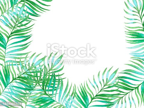 istock Watercolor palm leaf tree background. Frame summer invitation nature design. Wreath floral wedding illustration branch decoration card hand drawn isolated on white. 1324001223